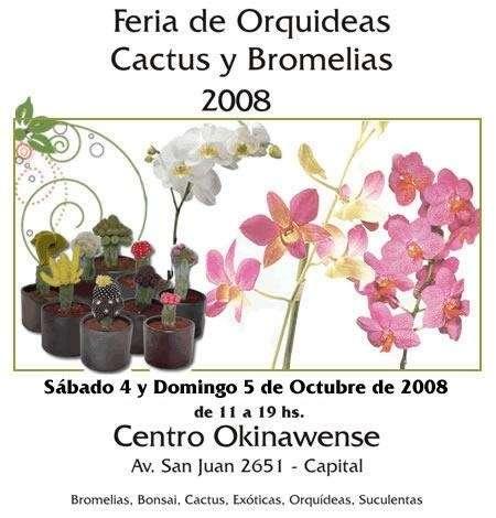 Fotos De Feria De Orquideas Bromelias Y Cactus Capital