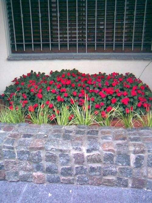Fotos de paisajismo y jardineria capital federal for Jardineria fotos
