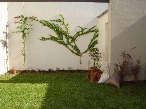 Fotos de mantenimiento de jardines buenos aires domesticos for Mantenimiento de jardines