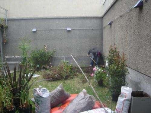 Fotos de mantenimiento de jardines buenos aires domesticos for Mantenimiento jardines