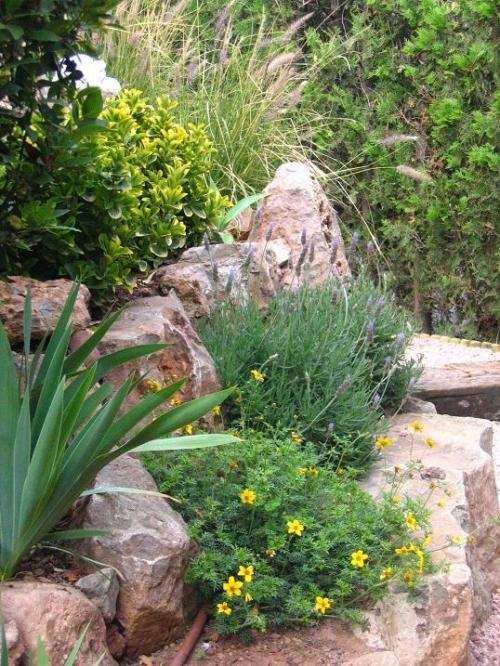 Fotos de parques y jardines mauro buenos aires otros for Parques y jardines fotos
