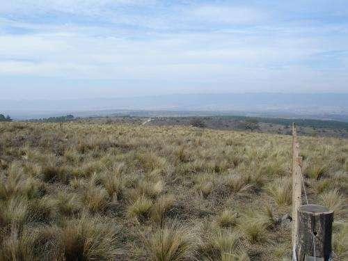 Campo en Calamuchita de 5.5 Has camino a La Cumbrecita — Córdoba