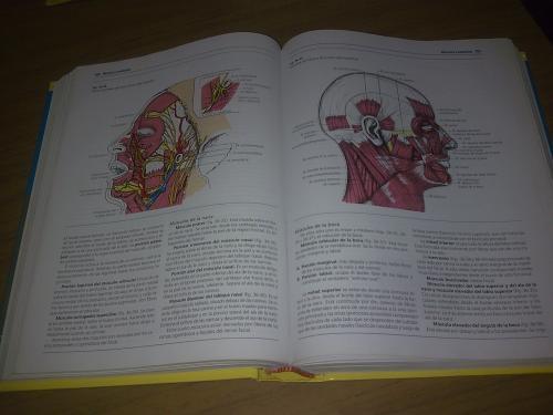 libro gratis secretariado computacion: