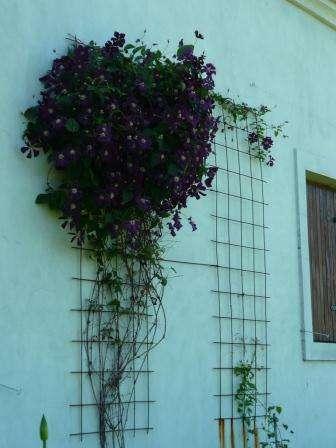 jardinera y paisajismo jardines hue en palermo otros servicios