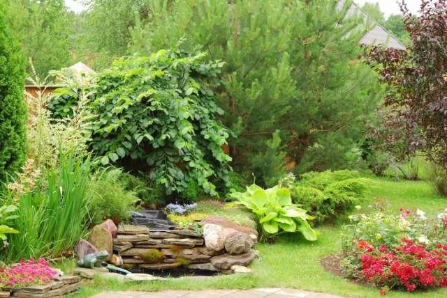 ver estas fotos en detalle with jardineria y paisajismo