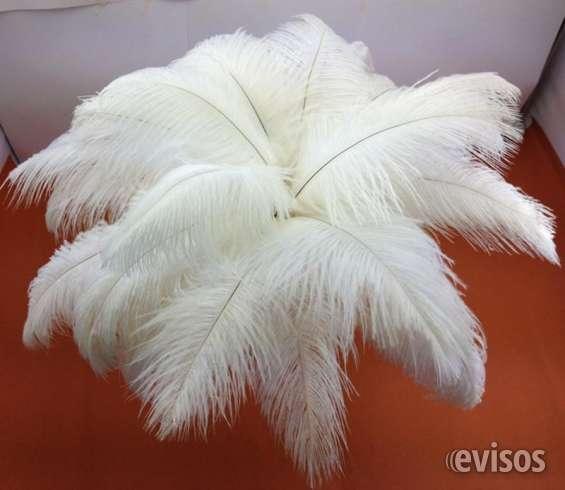 boda plumas de avestruz decoracin