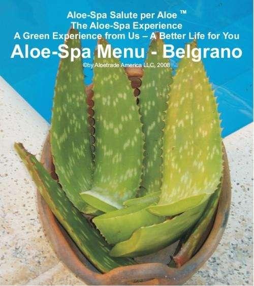 Dias de spa en buenos aires -aloe-spa salute per aloe
