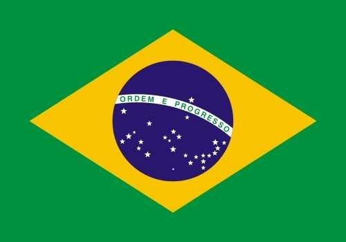 Profesores de portugués para empresas