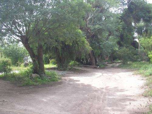 Alquilo casa en amaicha-tucuman