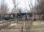 Vendo: Finca de 15 Has, San Rafael, Mendoza, Argentina