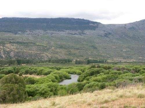 Excelente campo en corcovado c/río dentro de la propiedad