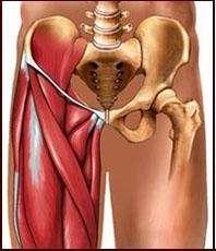 Pubialgia-tratamiento quiropractico-