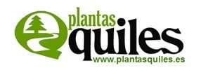 Empresa jardineria madrid - vivero madrid