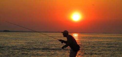 * curso de pesca con mosca