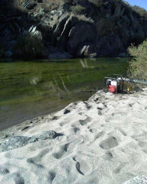 Loteo sobre el rio claro en san francisco, san luis