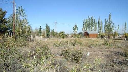 Micro clima - tupungato - mendoza - argentina