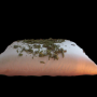 Almohadas de semillas y lavanda: Terapeuticas, antiestres