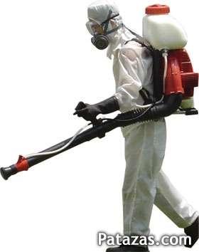Fumigaciones hormigas roedores cucarachas