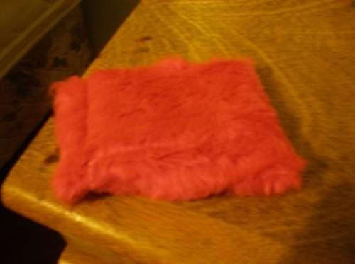 Fotos de Colchones, almohadones colchonetas para perros y gatos 3