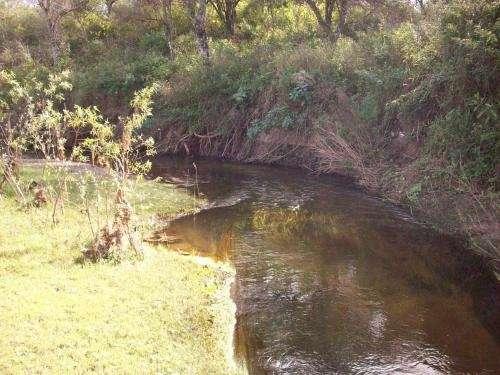Catamarca, tapso, 272 has. sobre rio guayamba