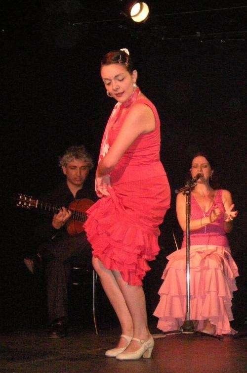 Flamenco - cursos de verano