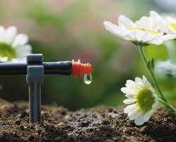 Sistemas de riego y jardines