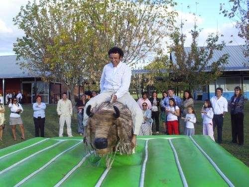 Fotos de Vendo toro mecánico para eventos 2