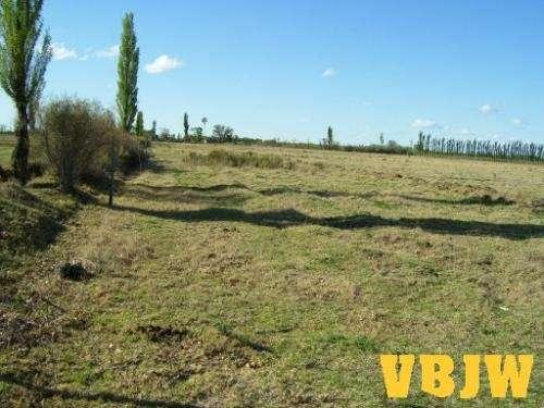 Oportunidad: campo de 11,5 hectáreas en san rafael, mendoza.
