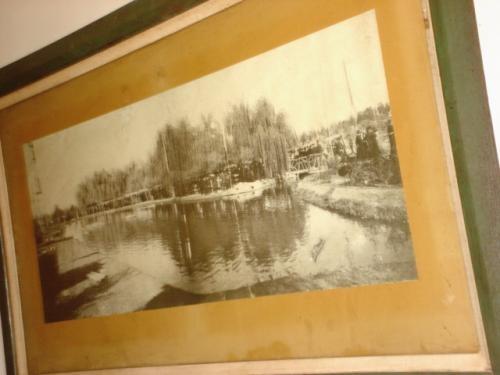 Vendo cuadro del lago del parque gral san martin, mendoza