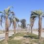 Terrenos en Roldán. Tierra de Sueños 3. www.ruizbienesraices.com.ar