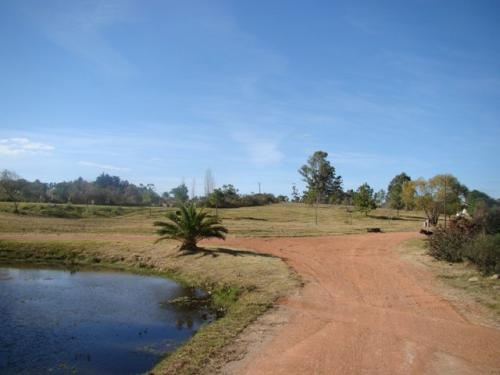 Fotos de Insuperables terrenos 2000m2 en ?chacras del pinar? barrio residencial en punta  3