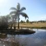 Insuperables Terrenos 2000m2 en ?Chacras del Pinar? Barrio Residencial en Punta del Este, URUGUAY. Todos los servicios. financiados!!!