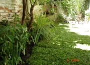 Entrega de plantas a domicilio