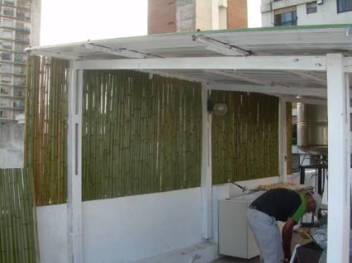 Vendo cañas de bambu