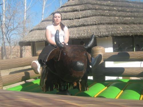 Vendo toro mecanico y juegos inflables con pagina web