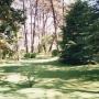 Vendo terreno en Punta del Este 1000 mts2