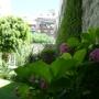 Jardinería Diseños ambientaciones Jardines Hue