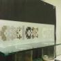 Una estanteria en espejo grabado y vidrio en base