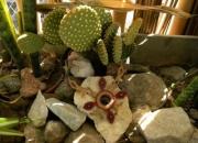 Cursoy taller personalizado de artesania y bijou…