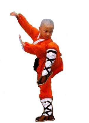 Kung fu para chicos