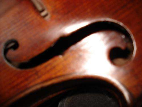 Profesora de violín