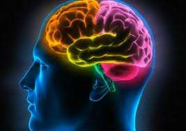 Consultora psicológica- facilitadora de memoria celular