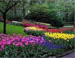 Jardineria-paisajismo-diseño y mantenimiento-jardines-riego