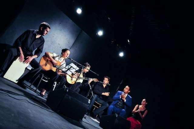 Fotos de Show flamenco para todo tipo de eventos 4