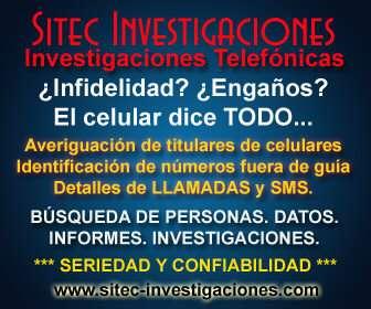 Detective: consigo detalles de llamadas y sms de celulares. titular de celular