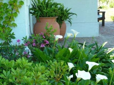 Jardinería y paisajismo jardines hue