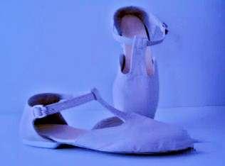 Media punta , zapatos para danza , indumentaria y accesorios varios