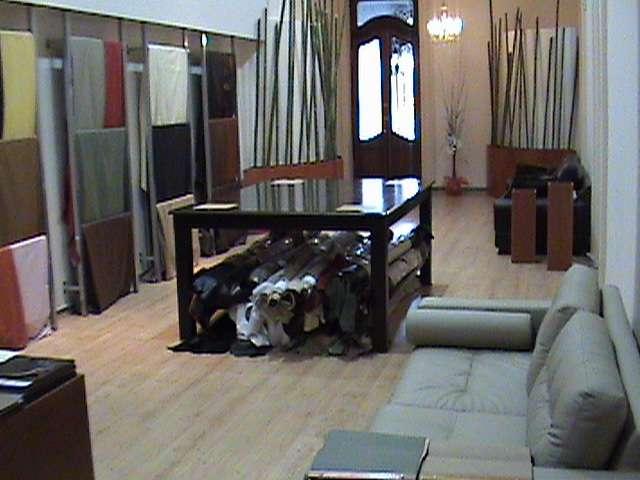 Cueros para tapiceria, decoracion y vestimenta
