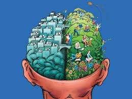 Hábitos y alimentos que mejoran nuestra memoria y funcionamiento cerebral