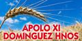 Apolo Xi - Dominguez Hnos
